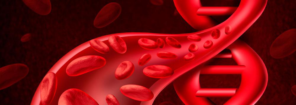 Já pensou em alternativas para a transfusão de sangue?
